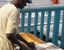 Bahamas-conch